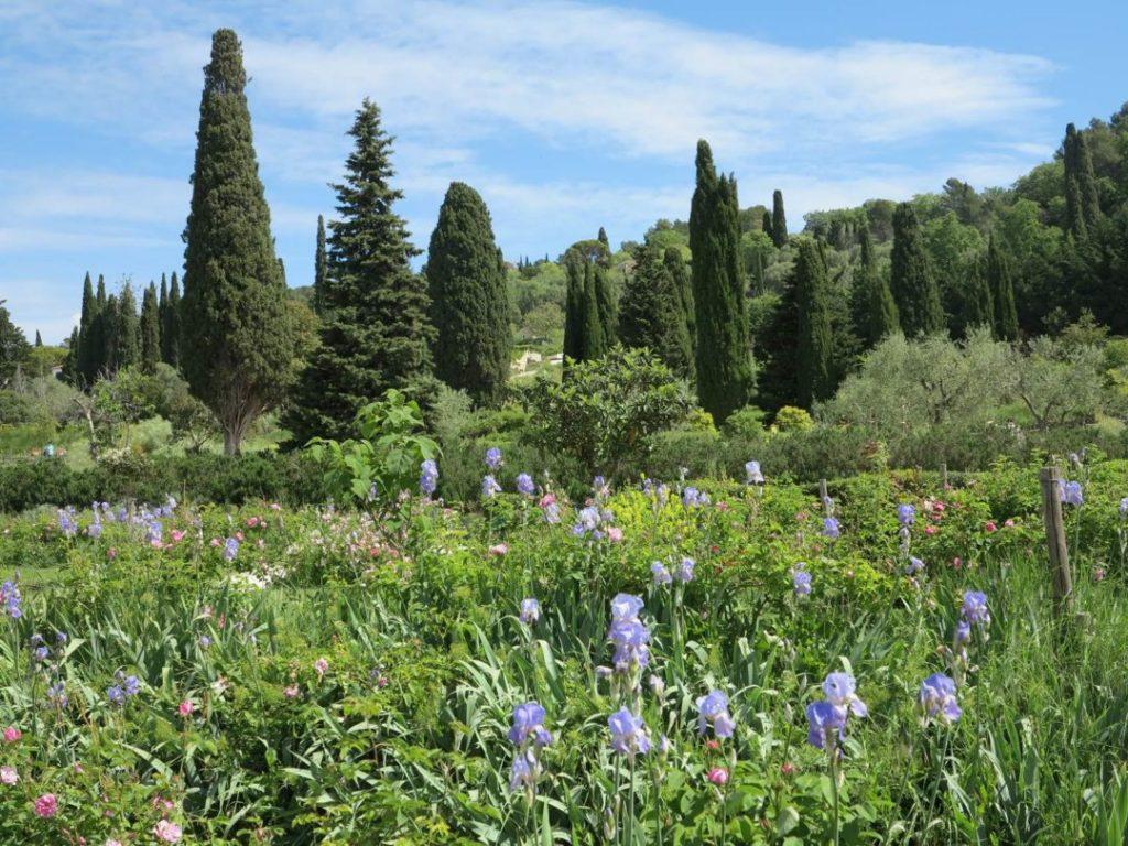 Créer un nouvel espace dans les Jardins du Musée International de la Parfumerie